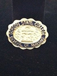 School Of Nursing Pin - Silver Plated